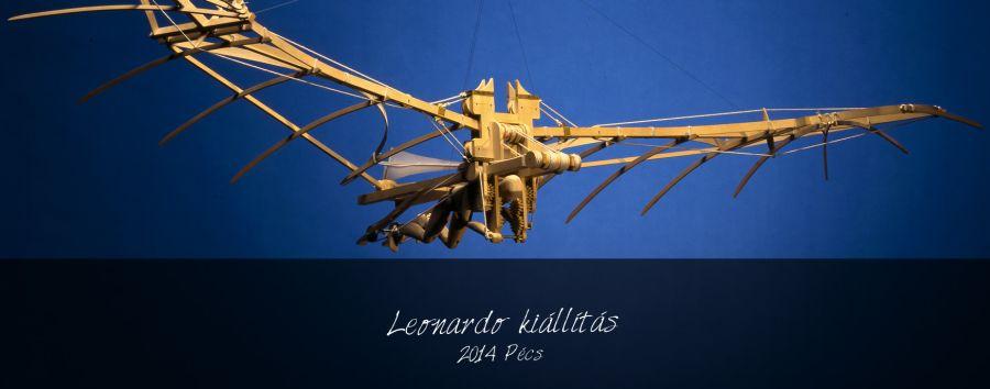 leonardo fly