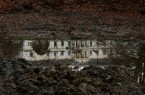 Megújul a doba-somlóvári Erdõdy-kastély parkja
