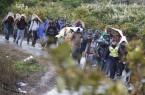 Illegális bevándorlás - Zákány